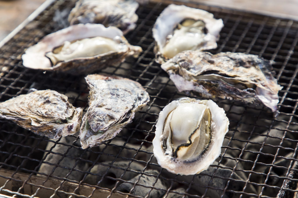 Hyogo's Oysters and Crabs: Kings of Flavor