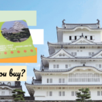 Should you buy Himeji Tourist Pass?