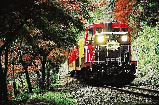รถไฟซากาโน่ รถไฟสายโรแมนติก (Sagano Train)