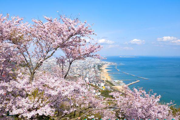 Spring in Kobe