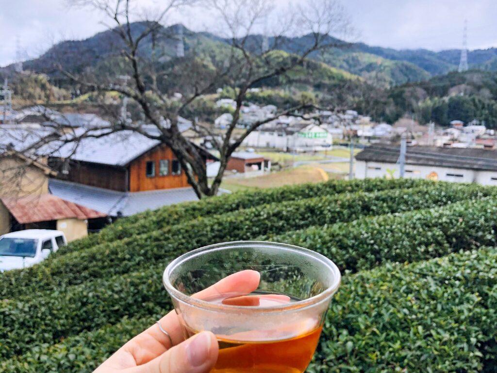 Wazuka Town: Green Tea Heaven in Kyoto