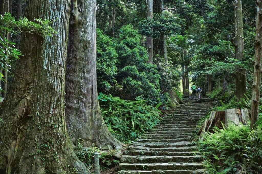 Kansai Outdoors Daimonzaka