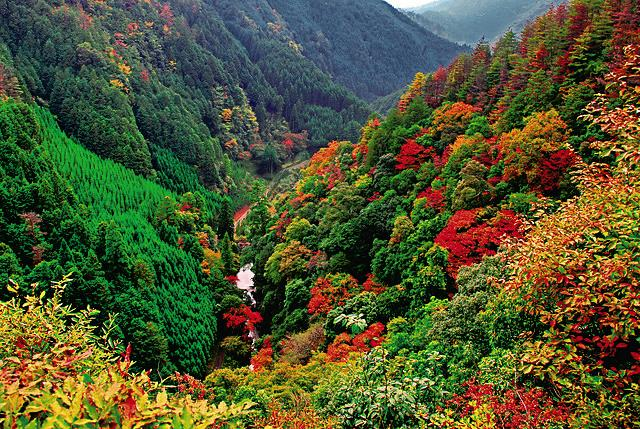 Kansai Outdoors Kin-un-kei Gorge