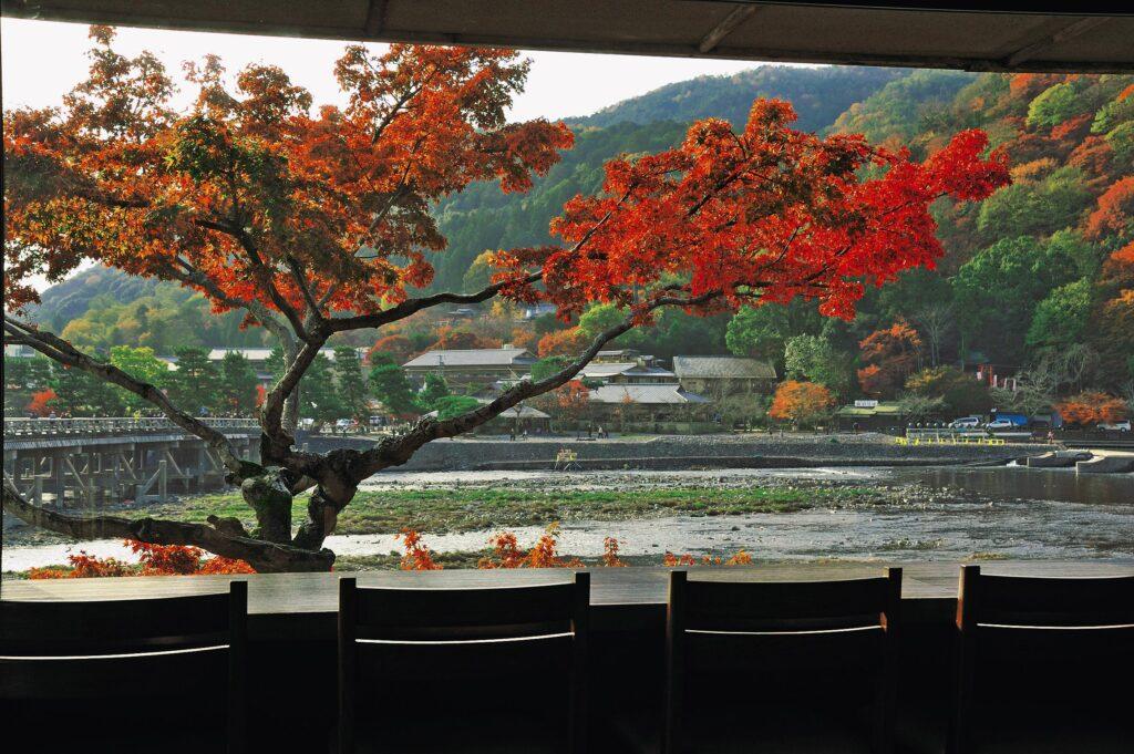 Arashiyama Yoshimura Kyoto Autumn