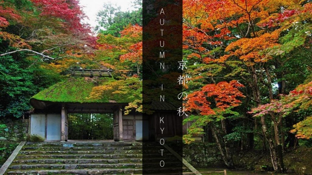 Autumn In Kyoto: The Best Spots to Enjoy The Fall Foliage